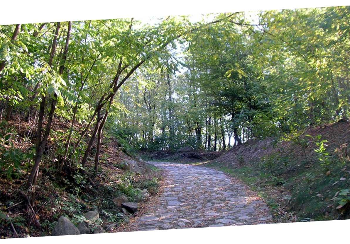 Spina verde Park, hiking in Como